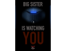 Big Sister Is Watching You
